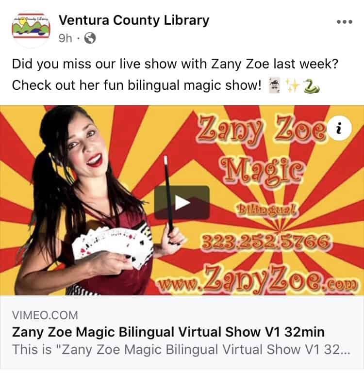 Virtual Magic Show Public Event